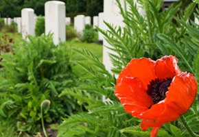 Ypres cemetary