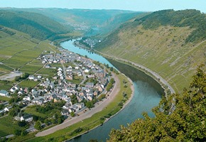 The Unmissable Stops Along the Moselle Wine Train
