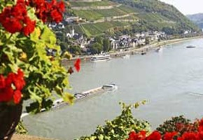 Alluring Rhine Valley